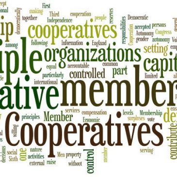 Cutting Edge Cooperatives